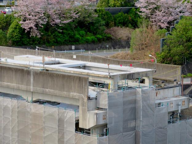 解体工事中の桃花台線桃花台東駅(2020年4月11日) - 20