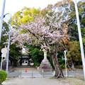伊多波刀神社 - 3