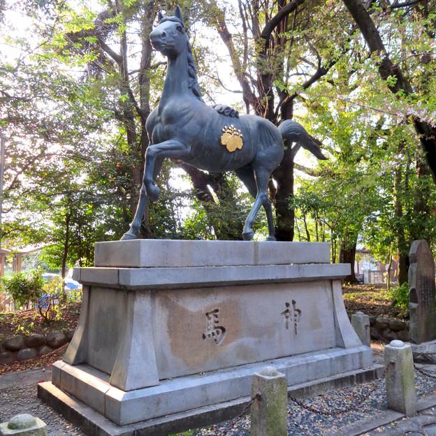 伊多波刀神社 - 12