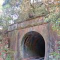 現在もJRが保線用として使用してる愛岐トンネル群第1トンネル - 1