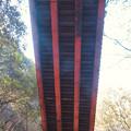 東海自然歩道から見上げた愛岐トンネル群第1・第2トンネル間を結ぶ保線道路となってる陸橋 - 4