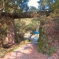東海自然歩道から見上げた愛岐トンネル群第1・第2トンネル間を結ぶ保線道路となってる陸橋 - 5