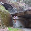 東海自然歩道から見たJR中央線のトンネル - 8