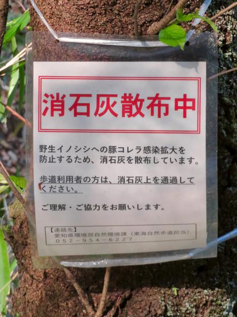 東海自然歩道 春日井コース - 9:豚コレラ感染拡大防止のための消石灰散布の説明