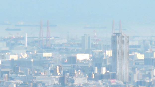 道樹山山頂から見えた、たぶん名港西大橋と名古屋港を航行中の船