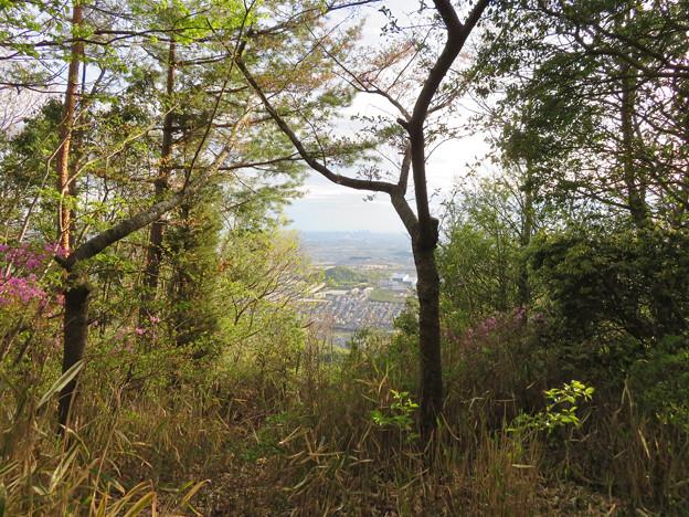 道樹山山頂から見た景色 - 1