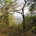 Photos: 道樹山山頂から見た景色 - 1