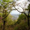 Photos: 道樹山山頂から見た景色 - 2