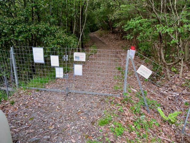 道樹山 - 1:イノシシ侵入防止用の柵(沢側)