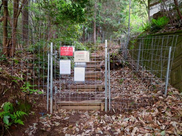 道樹山 - 4:登山道入口のイノシシ侵入防止柵