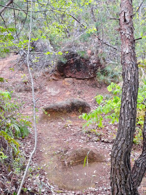 「みろくの森」の地面から露出してる花崗岩 - 2