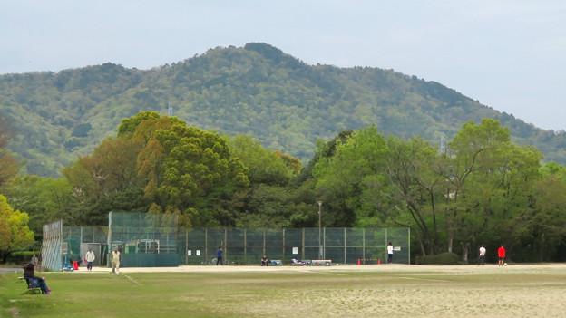 高森山公園から見た春日井三山 - 1:道樹山