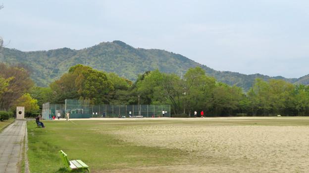 高森山公園から見た春日井三山 - 2:道樹山