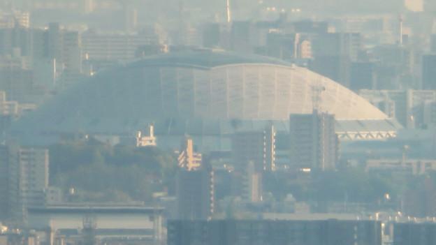 小牧市ふれあいの森:リニア工事で開けた(?)展望スペースから見た景色 - 6(ナゴヤドーム)