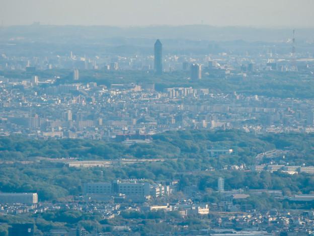 弥勒山 山頂展望台から見た景色 - 13:東山スカイタワー