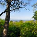 Photos: 弥勒山 山頂から見た景色(多治見方面) - 1