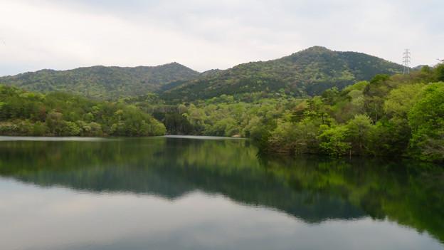 築水池 - 19:弥勒山と大谷山