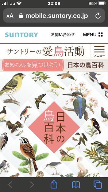 サントリーの愛鳥活動「日本の鳥百科」- 1:トップ