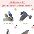 Photos: サントリーの愛鳥活動「日本の鳥百科」- 4:検索結果の一覧表示
