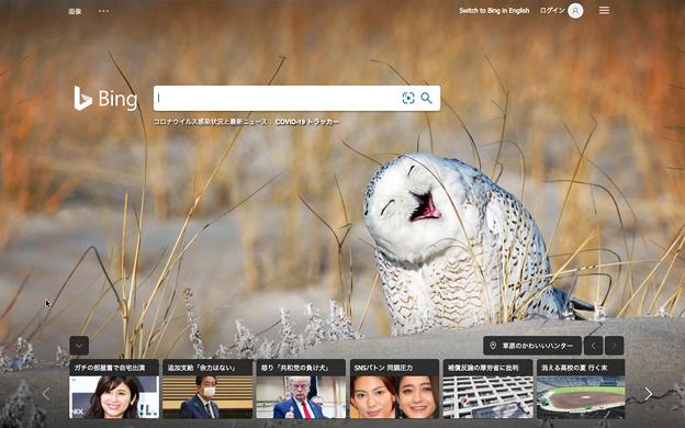 Bingトップページにユーモラスなシロフクロウの写真!w