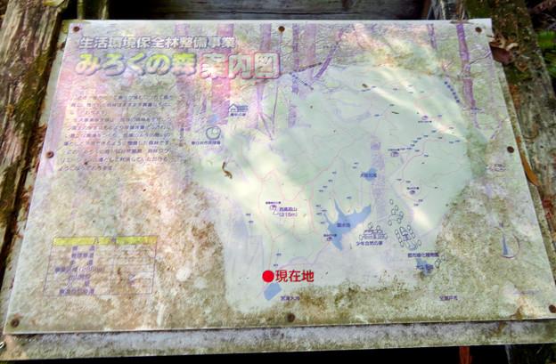 西高森山の登山道 - 3:登山道入口の「No.1」の分かれ道にある「みろくの森」案内図