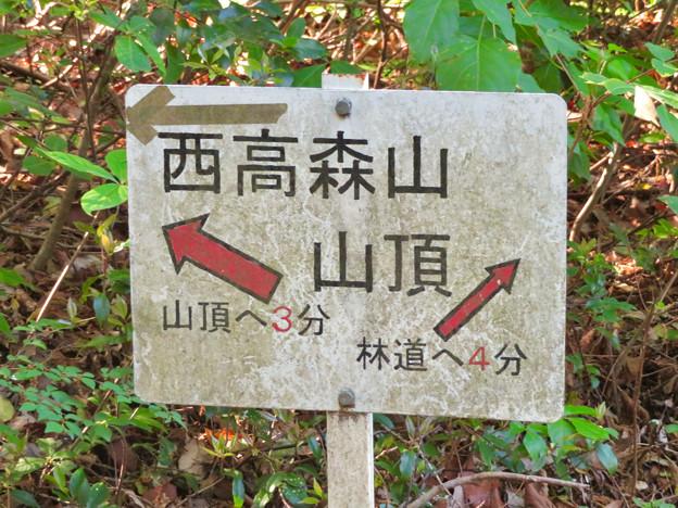西高森山の登山道 - 11:山頂への案内板