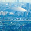 Photos: 西高森山展望台から見た景色 - 15:ナゴヤドームと庄内川に架かる橋