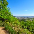 Photos: 西高森山展望台から見た景色 - 23