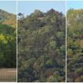 Photos: 宮滝大池から見た弥勒山の展望台 - 1