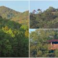 Photos: 宮滝大池から見た弥勒山の展望台 - 3