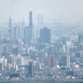 尾張白山社から見た景色 - 7:名古屋テレビ塔と名港西大橋