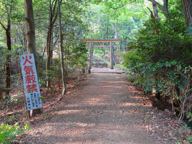 本宮山頂上手前にある大縣神社の鳥居 - 1