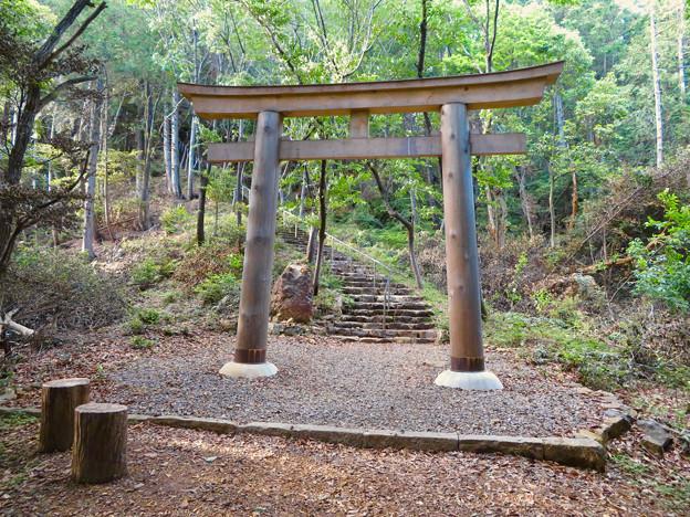 本宮山頂上手前にある大縣神社の鳥居 - 2