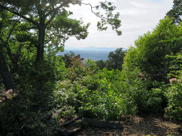 本宮山山頂から見た伊吹山方面の景色