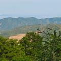 Photos: 本宮山頂上から見える景色 - 10:白山と春日井三山