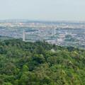 Photos: 本宮山頂上手前の雨宮社から見た景色 - 36:パノラマ