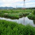 Photos: 内津川と大谷川の合流地点 - 4