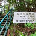 東海自然歩道春日井コースの内津峠側入り口 - 3