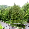Photos: 内津峠近くにある東海自然歩道の螺旋階段 - 4