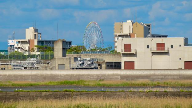 新川沿いから見たシートレインランドの大観覧車 - 1