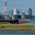 新川沿いから見た名駅ビル群 - 4