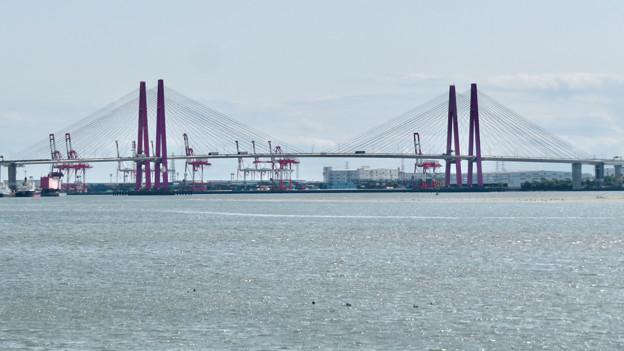 藤前干潟 - 1:名港西大橋と干潟