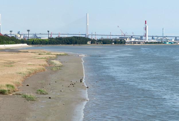 庄内新川橋から見た景色 - 2:名港中央大橋