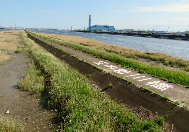 庄内新川橋から見た景色 - 6:庄内川と新川の中洲