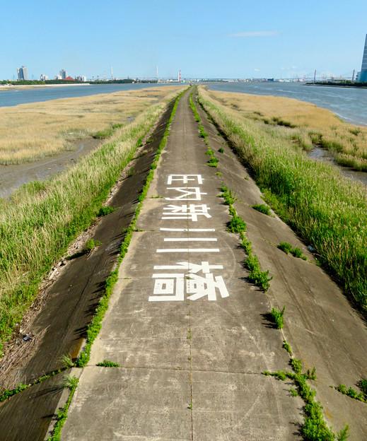 庄内新川橋から見た景色 - 7:庄内川と新川の中洲