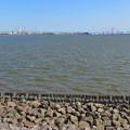 藤前干潟 藤前活動センター側:潮が満ちてる時間帯 - 1