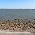 藤前干潟 藤前活動センター側:潮が満ちてる時間帯 - 2