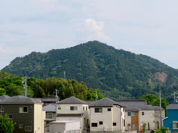 北側から見た本宮山