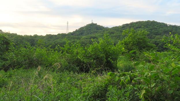 南側から見た西高森山 - 1