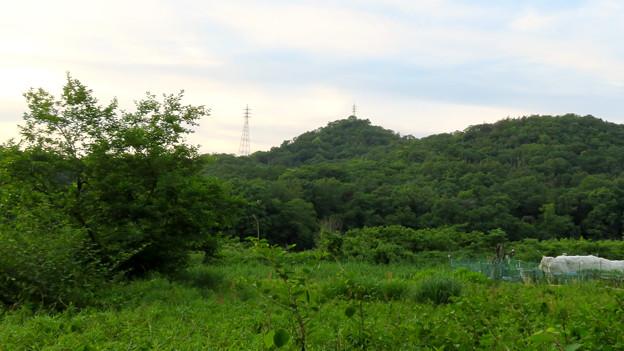 南側から見た西高森山 - 3